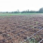 irrigation pipes for sale in Kenya