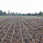 cost of 1 acre drip system