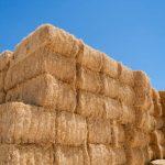 rectangular hay