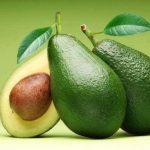 Pest free avocado fruit